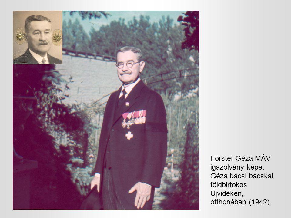 Forster Géza MÁV igazolvány képe. Géza bácsi bácskai földbirtokos Újvidéken, otthonában (1942).