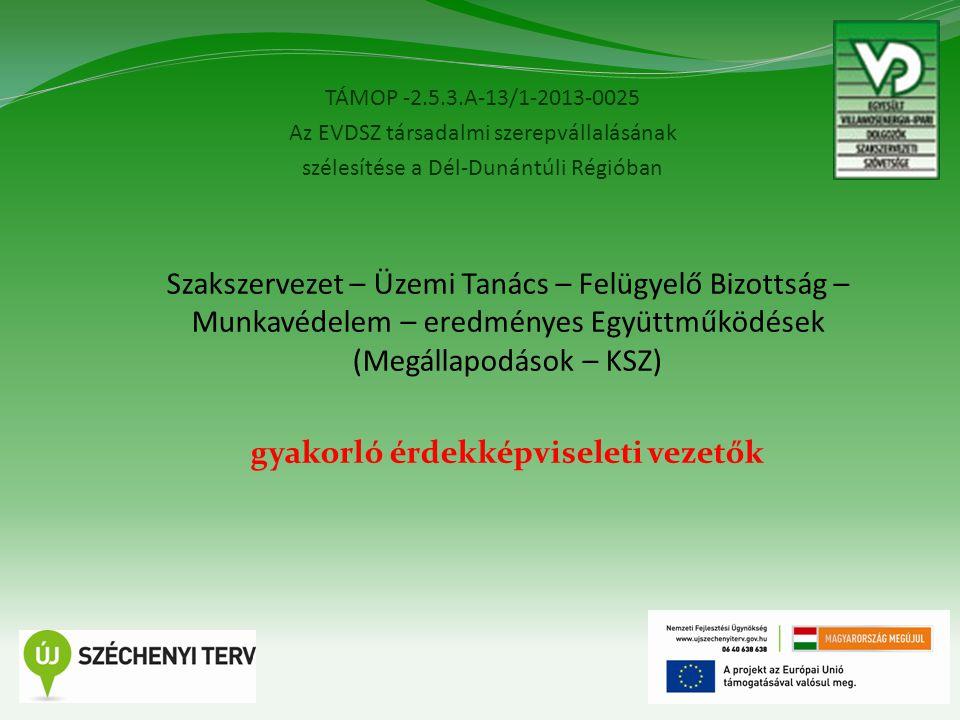 TÁMOP -2.5.3.A-13/1-2013-0025 Az EVDSZ társadalmi szerepvállalásának szélesítése a Dél-Dunántúli Régióban 4 Szakszervezet – Üzemi Tanács – Felügyelő B