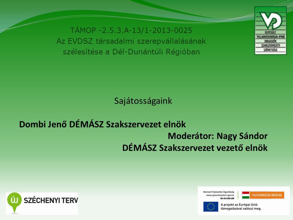 TÁMOP -2.5.3.A-13/1-2013-0025 Az EVDSZ társadalmi szerepvállalásának szélesítése a Dél-Dunántúli Régióban 7 Sajátosságaink Dombi Jenő DÉMÁSZ Szakszerv