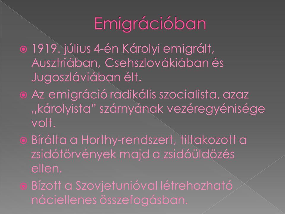  1919. július 4-én Károlyi emigrált, Ausztriában, Csehszlovákiában és Jugoszláviában élt.