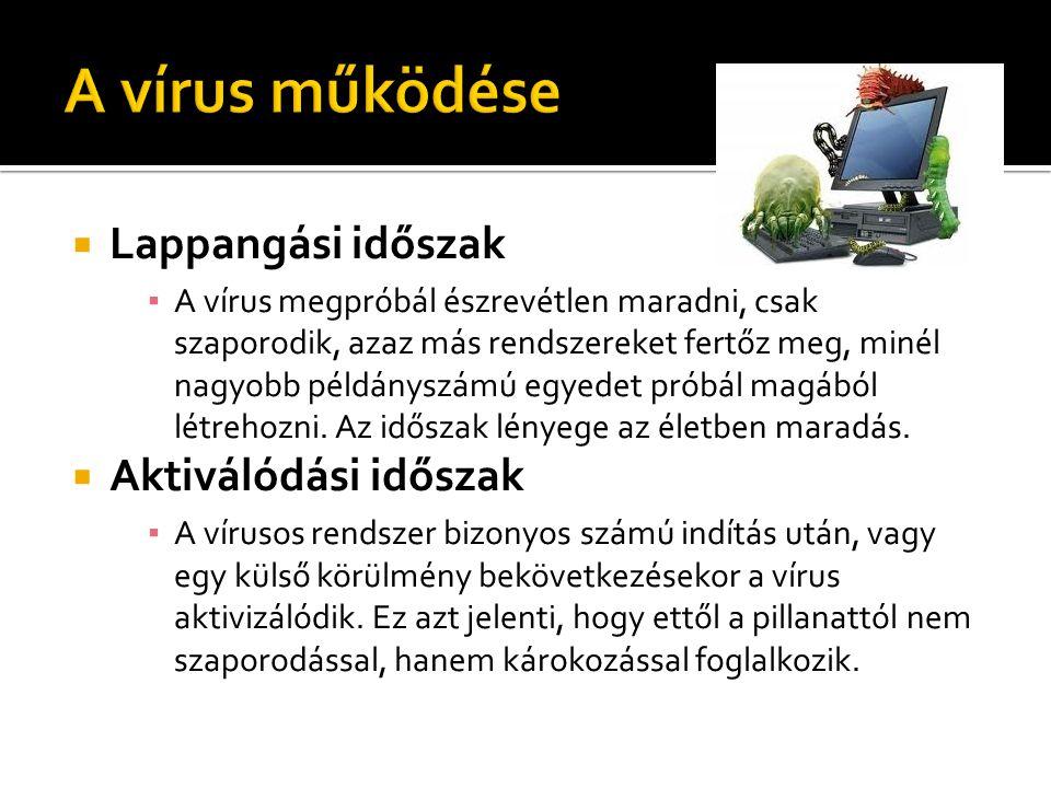  Lappangási időszak ▪ A vírus megpróbál észrevétlen maradni, csak szaporodik, azaz más rendszereket fertőz meg, minél nagyobb példányszámú egyedet pr