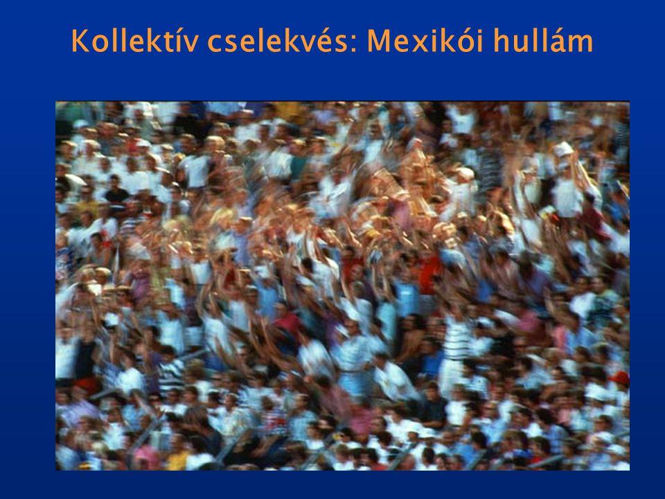 Kollektív cselekvés: Mexikói hullám