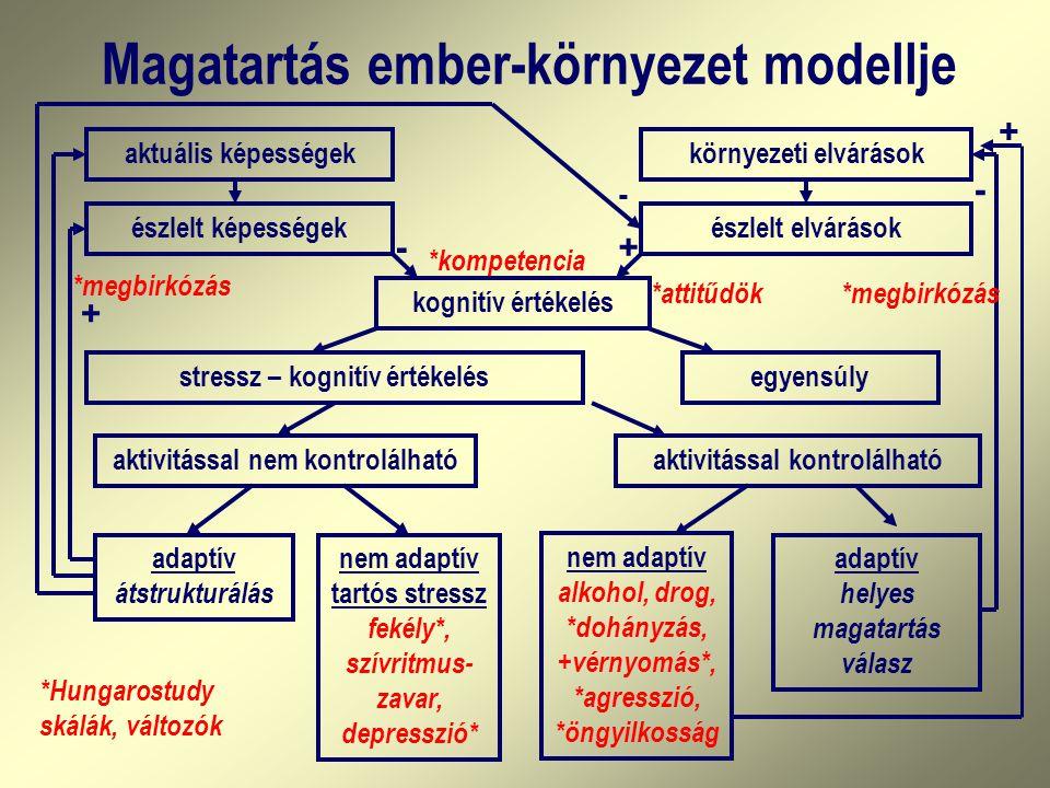 Magatartás ember-környezet modellje aktuális képességek észlelt képességek környezeti elvárások észlelt elvárások kognitív értékelés stressz – kognití