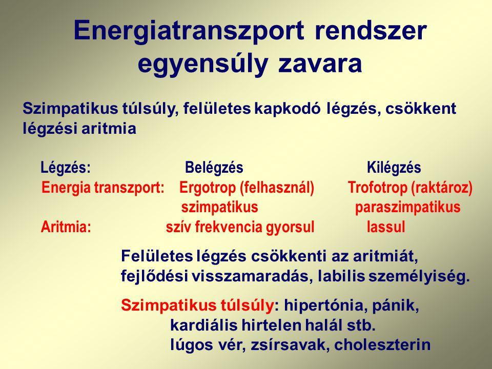 Energiatranszport rendszer egyensúly zavara Szimpatikus túlsúly, felületes kapkodó légzés, csökkent légzési aritmia Légzés: BelégzésKilégzés Energia t
