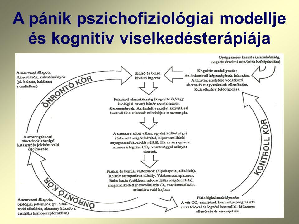 A pánik pszichofiziológiai modellje és kognitív viselkedésterápiája