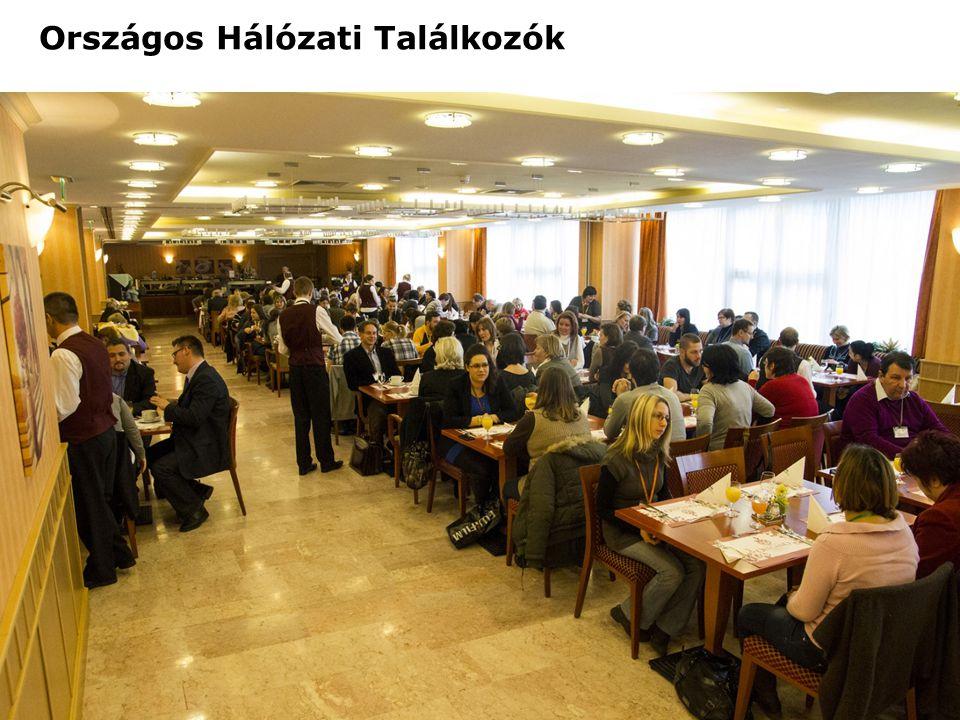 Hálózati Szakmai műhelyek 4 helyszínen Székesfehérvár, Veszprém, Debrecen, Pécs 4 témában -Pszichoszociális fogyatékossággal élő emberek hatékony segítésének lehetőségei; -Partnerség építés elvei, technikái, módszerei; -Tárgyalástechnika, kifogáskezelés; -Munkáltatói kapcsolatok menedzselése; Hálózati Szakmai Műhelyek