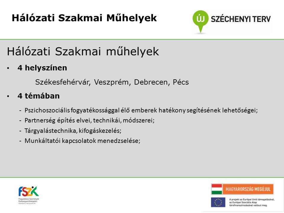 Hálózati Szakmai műhelyek 4 helyszínen Székesfehérvár, Veszprém, Debrecen, Pécs 4 témában -Pszichoszociális fogyatékossággal élő emberek hatékony segí