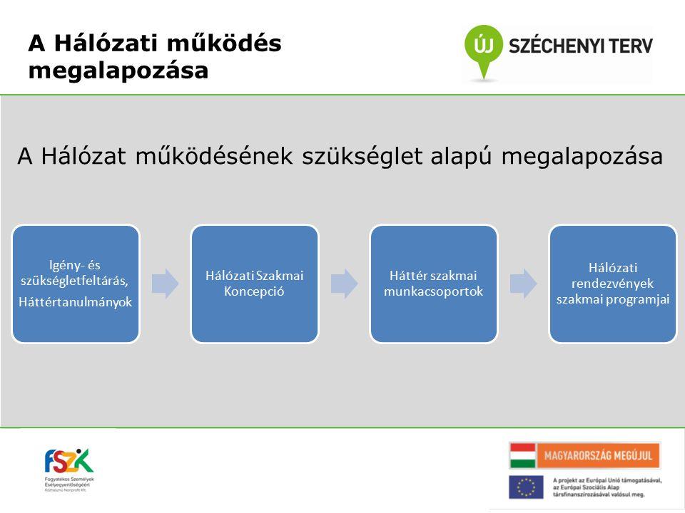 A Hálózat működésének szükséglet alapú megalapozása Igény- és szükségletfeltárás, Háttértanulmányok Hálózati Szakmai Koncepció Háttér szakmai munkacso