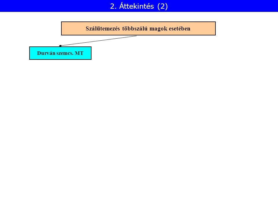 Durván szemcs. MT Szálütemezés többszálú magok esetében 2. Áttekintés (2)