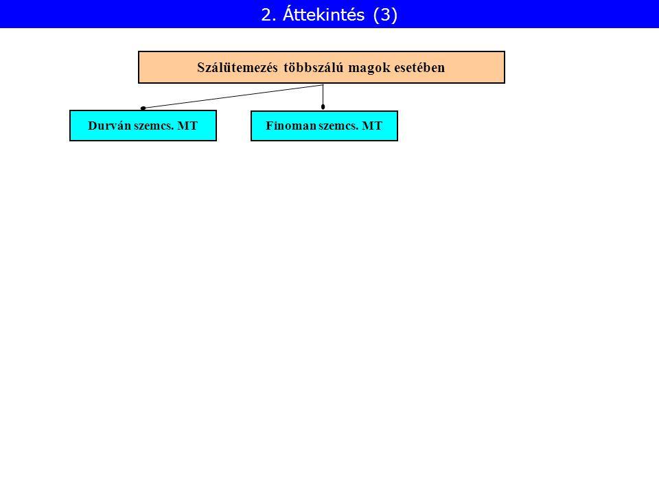 Durván szemcs. MT Finoman szemcs. MT Szálütemezés többszálú magok esetében 2. Áttekintés (3)
