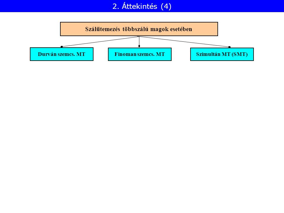 Durván szemcs. MT Finoman szemcs. MT Szimultán MT (SMT) Szálütemezés többszálú magok esetében 2. Áttekintés (4)