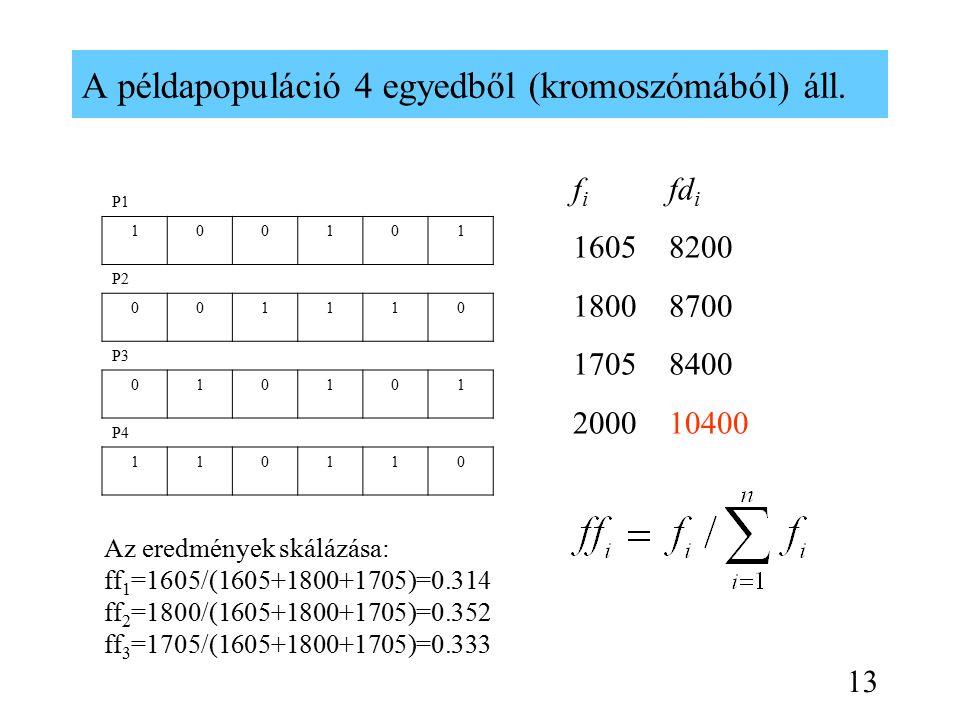 A példapopuláció 4 egyedből (kromoszómából) áll.
