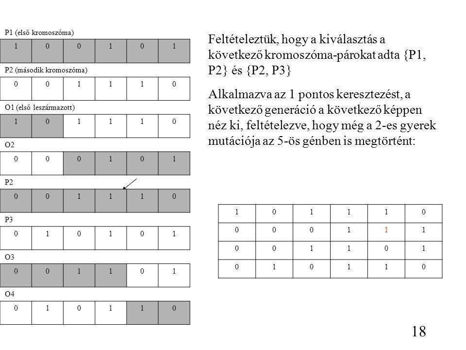 P1 (első kromoszóma) 100101 P2 (második kromoszóma) 001110 O1 (első leszármazott) 101110 O2 000101 P2 001110 P3 010101 O3 001101 O4 010110 Feltételeztük, hogy a kiválasztás a következő kromoszóma-párokat adta {P1, P2} és {P2, P3} Alkalmazva az 1 pontos keresztezést, a következő generáció a következő képpen néz ki, feltételezve, hogy még a 2-es gyerek mutációja az 5-ös génben is megtörtént: 101110 000111 001101 010110 18