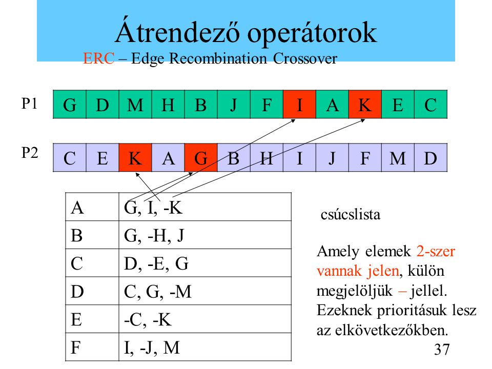 Átrendező operátorok ERC – Edge Recombination Crossover GDMHBJFIAKEC P1 P2 CEKAGBHIJFMD AG, I, -K BG, -H, J CD, -E, G DC, G, -M E-C, -K FI, -J, M csúcslista Amely elemek 2-szer vannak jelen, külön megjelöljük – jellel.