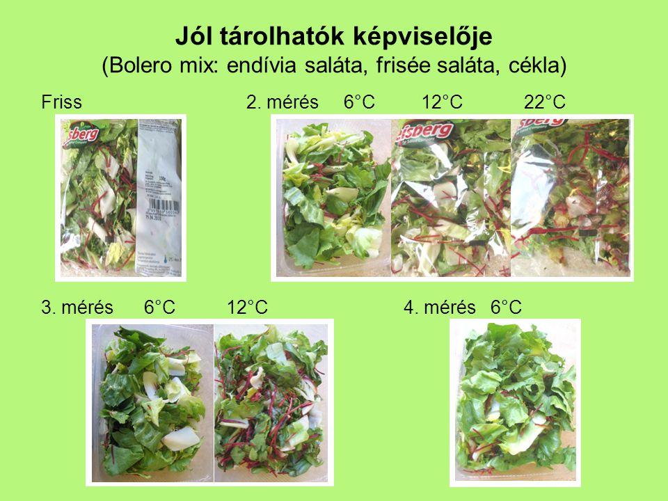 Jól tárolhatók képviselője (Bolero mix: endívia saláta, frisée saláta, cékla) 2. mérés 6°C 12°C 22°C 4. mérés 6°C Friss 3. mérés 6°C 12°C