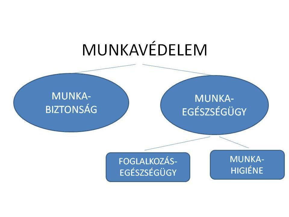 Mvt. ábra