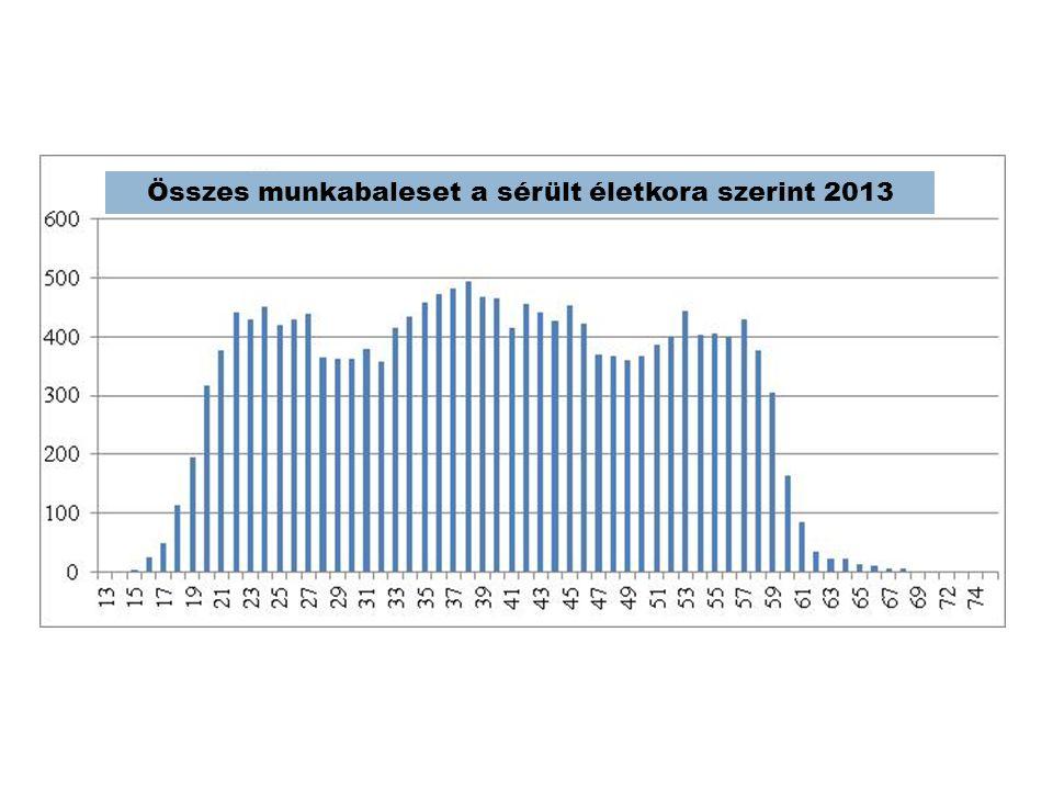 Összes munkabaleset a sérült életkora szerint 2013