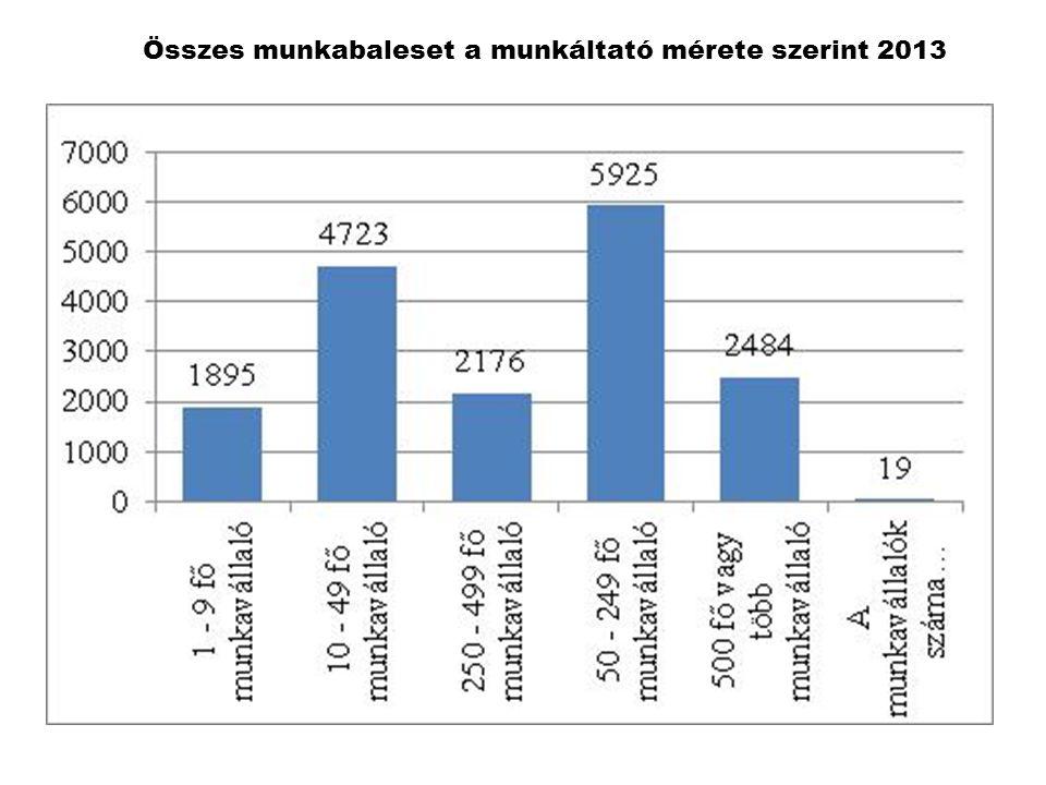 Összes munkabaleset a munkáltató mérete szerint 2013