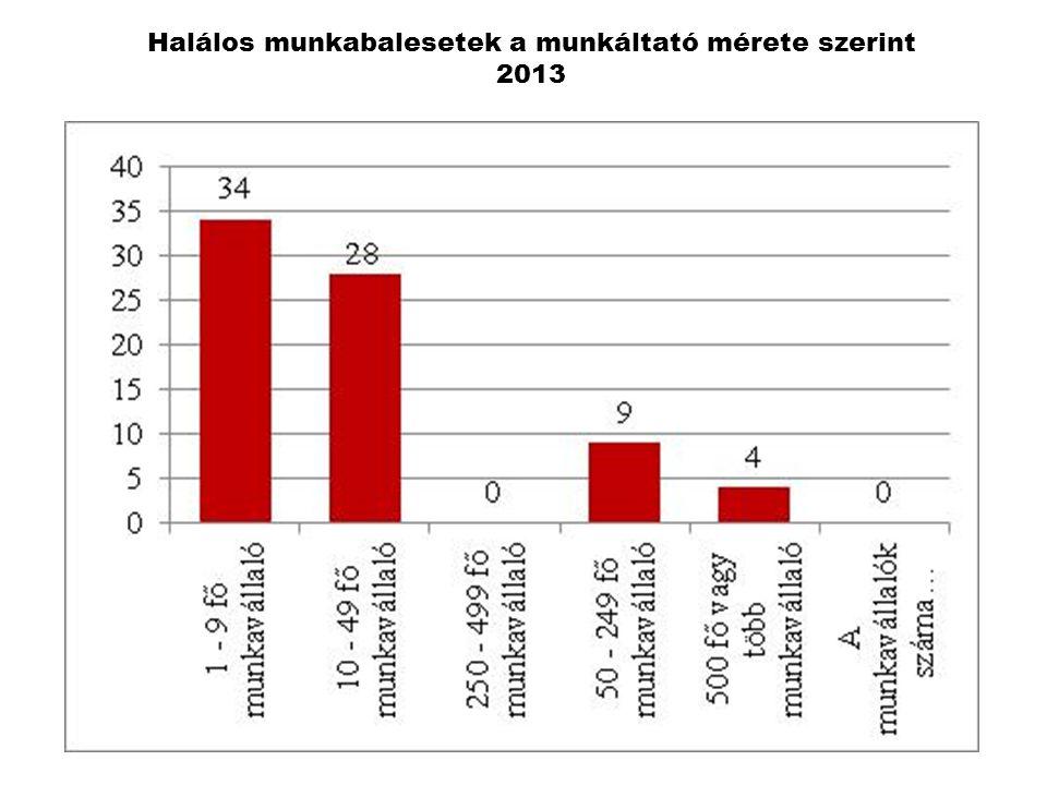 Halálos munkabalesetek a munkáltató mérete szerint 2013