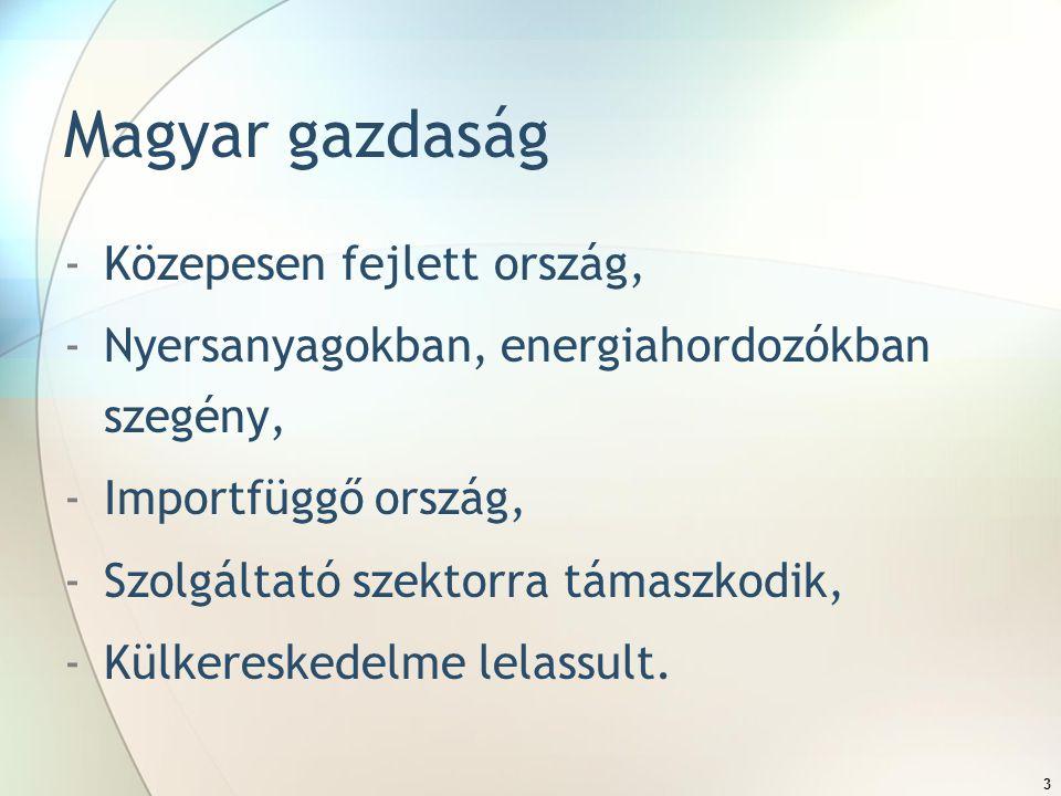 3 Magyar gazdaság -Közepesen fejlett ország, -Nyersanyagokban, energiahordozókban szegény, -Importfüggő ország, -Szolgáltató szektorra támaszkodik, -Külkereskedelme lelassult.