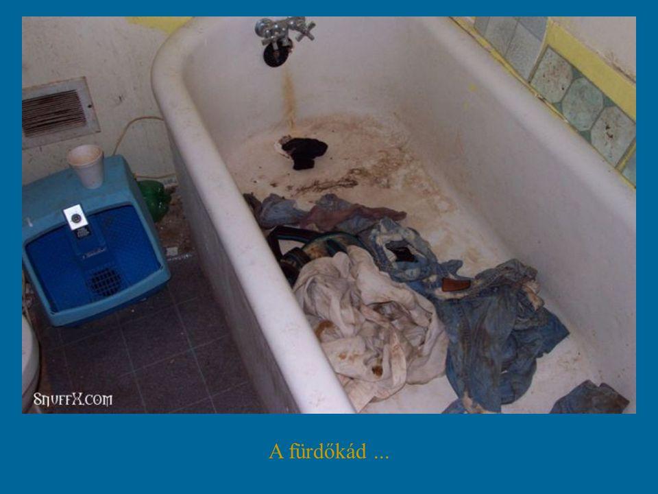 A mosdókagyló...