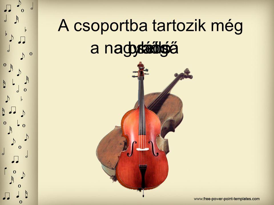 A hegedű a vonós hangszerek legmagasabb hangú és legkisebb tagja.