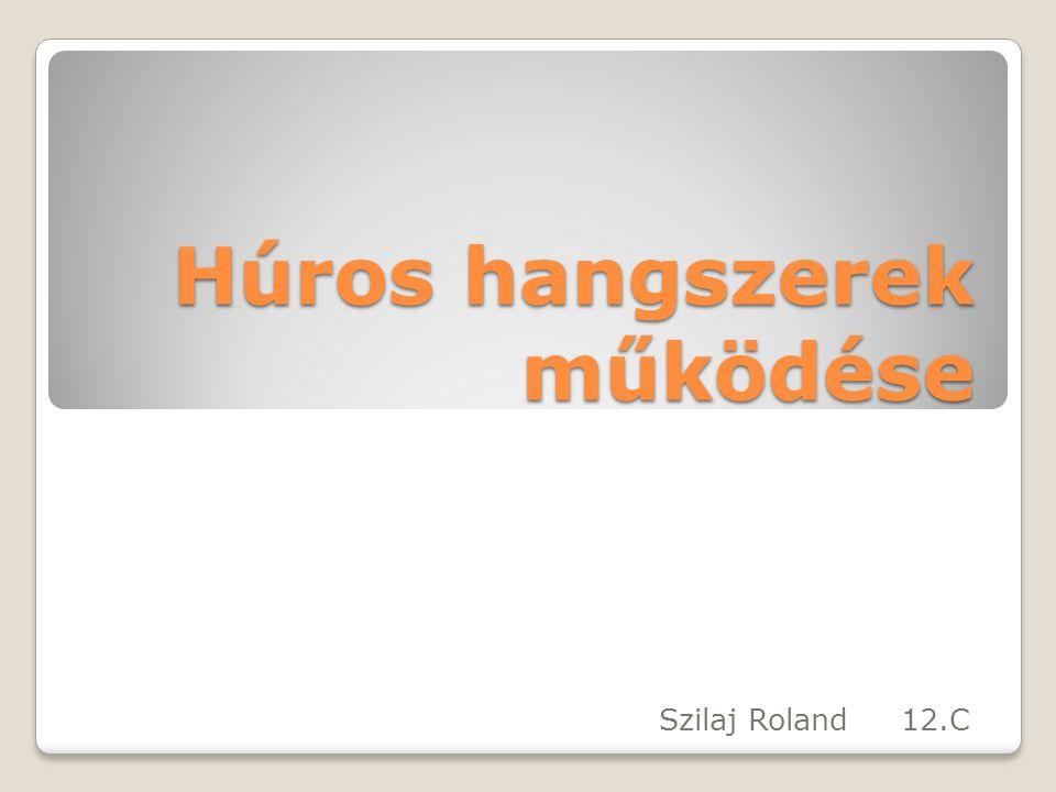 Húros hangszerek működése Szilaj Roland 12.C