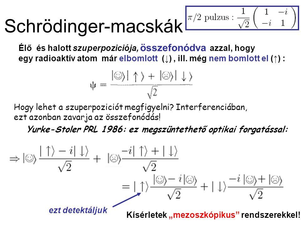 Schrödinger-macskák Élő és halott szuperpoziciója, összefonódva azzal, hogy egy radioaktív atom már elbomlott (↓), ill.
