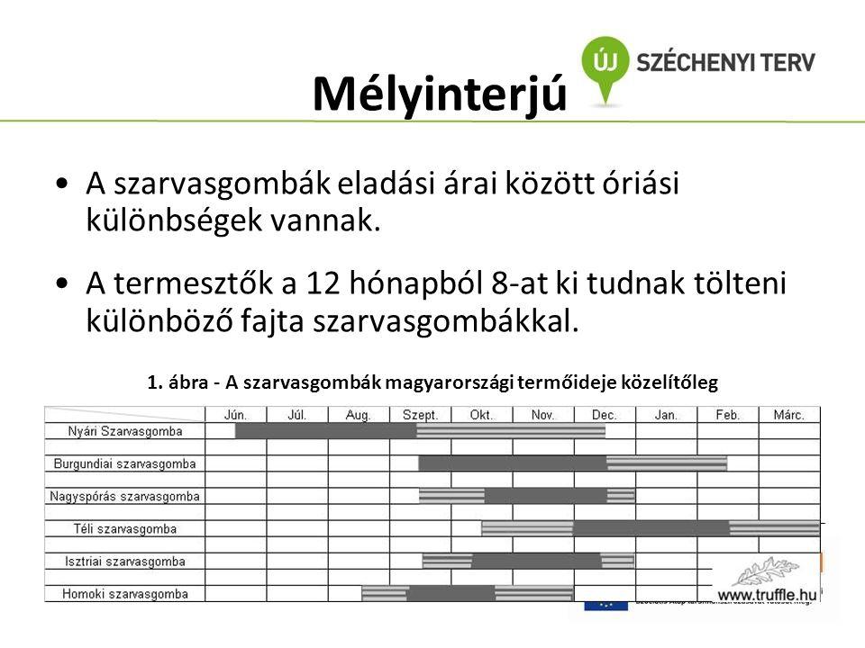 A szarvasgombák eladási árai között óriási különbségek vannak. A termesztők a 12 hónapból 8-at ki tudnak tölteni különböző fajta szarvasgombákkal. Mél