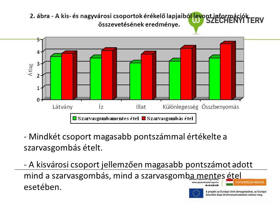 2. ábra - A kis- és nagyvárosi csoportok érékelő lapjaiból levont információk összevetésének eredménye. - Mindkét csoport magasabb pontszámmal értékel