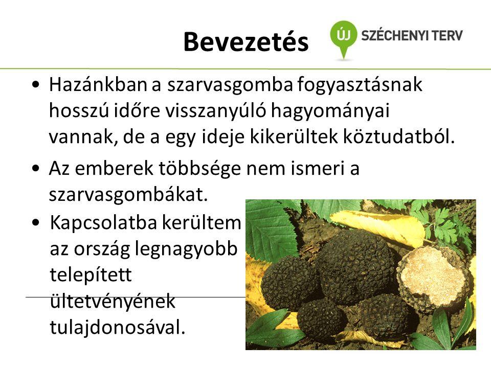 A szakirodalmakból levont információk A szarvasgomba fogyasztás régen hozzá tartozott a magyar kultúrához.