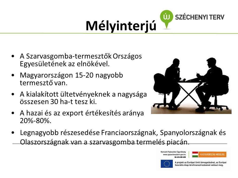 Mélyinterjú A Szarvasgomba-termesztők Országos Egyesületének az elnökével. Magyarországon 15-20 nagyobb termesztő van. A kialakított ültetvényeknek a
