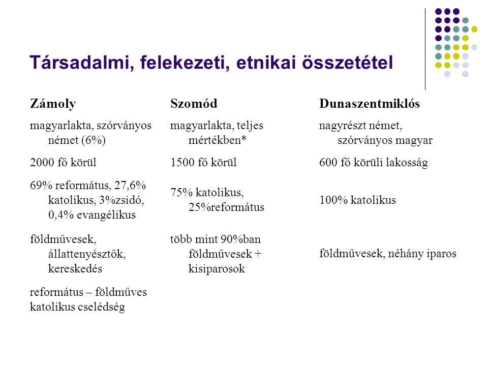 Társadalmi, felekezeti, etnikai összetétel ZámolySzomódDunaszentmiklós magyarlakta, szórványos német (6%) magyarlakta, teljes mértékben* nagyrészt ném