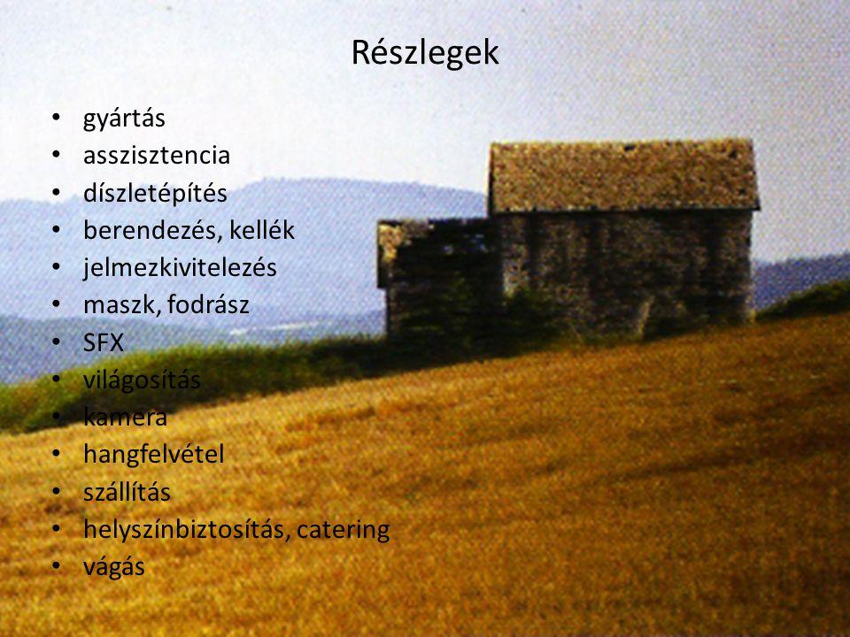 Egy magyar producer lehetőségei alkotói aktivitás piaci adottságok (nyelv, szerzői film, műfaji filmek) finanszírozási lehetőségek a megtérülés esélyei törvényi háttér