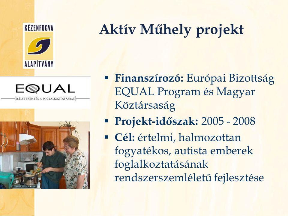  Finanszírozó: Európai Bizottság EQUAL Program és Magyar Köztársaság  Projekt-időszak: 2005 - 2008  Cél: értelmi, halmozottan fogyatékos, autista e