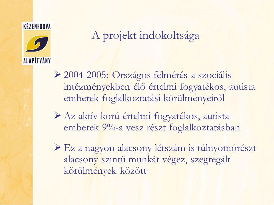 2004-2005: Országos felmérés a szociális intézményekben élő értelmi fogyatékos, autista emberek foglalkoztatási körülményeiről  Az aktív korú értel