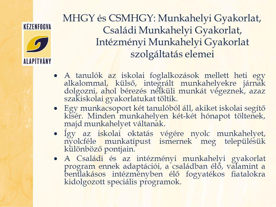 MHGY és CSMHGY: Munkahelyi Gyakorlat, Családi Munkahelyi Gyakorlat, Intézményi Munkahelyi Gyakorlat szolgáltatás elemei  A tanulók az iskolai foglalk