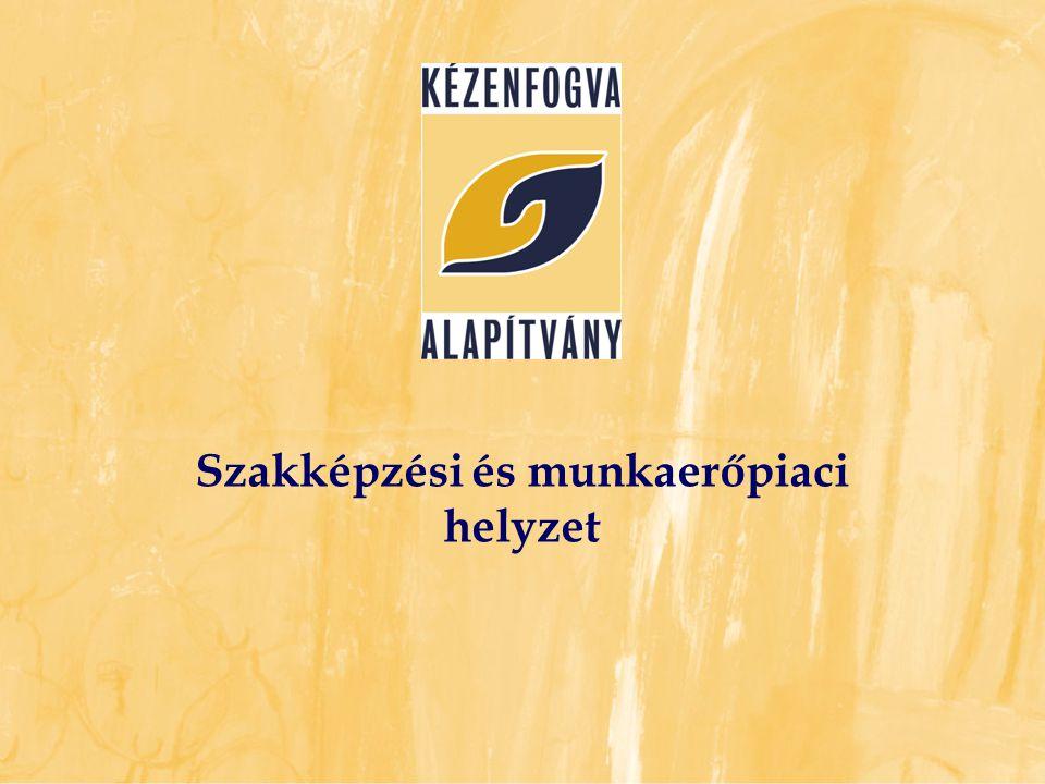 Az értelmi fogyatékos emberek munkaerőpiaci helyzete Magyarországon (Népszámlálás, 2001) Összesen 56 963 Aktív korú személyek 40 908 Szakképzettek 1764 (4%) Foglalkoztatottak 3 992 (9%)!!.