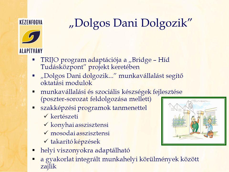 """ TRIJO program adaptációja a """"Bridge – Híd Tudásközpont"""" projekt keretében  """"Dolgos Dani dolgozik..."""" munkavállalást segítő oktatási modulok  munka"""