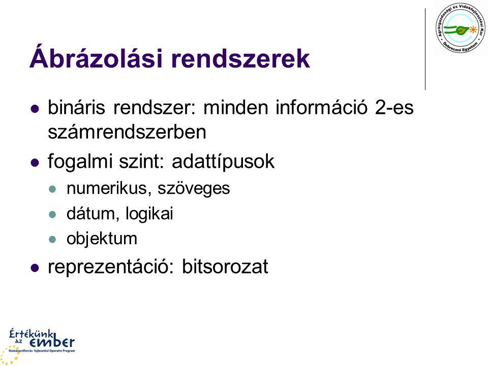 Ábrázolási rendszerek bináris rendszer: minden információ 2-es számrendszerben fogalmi szint: adattípusok numerikus, szöveges dátum, logikai objektum