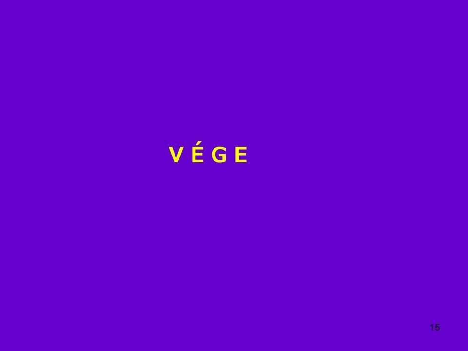 15 V É G E