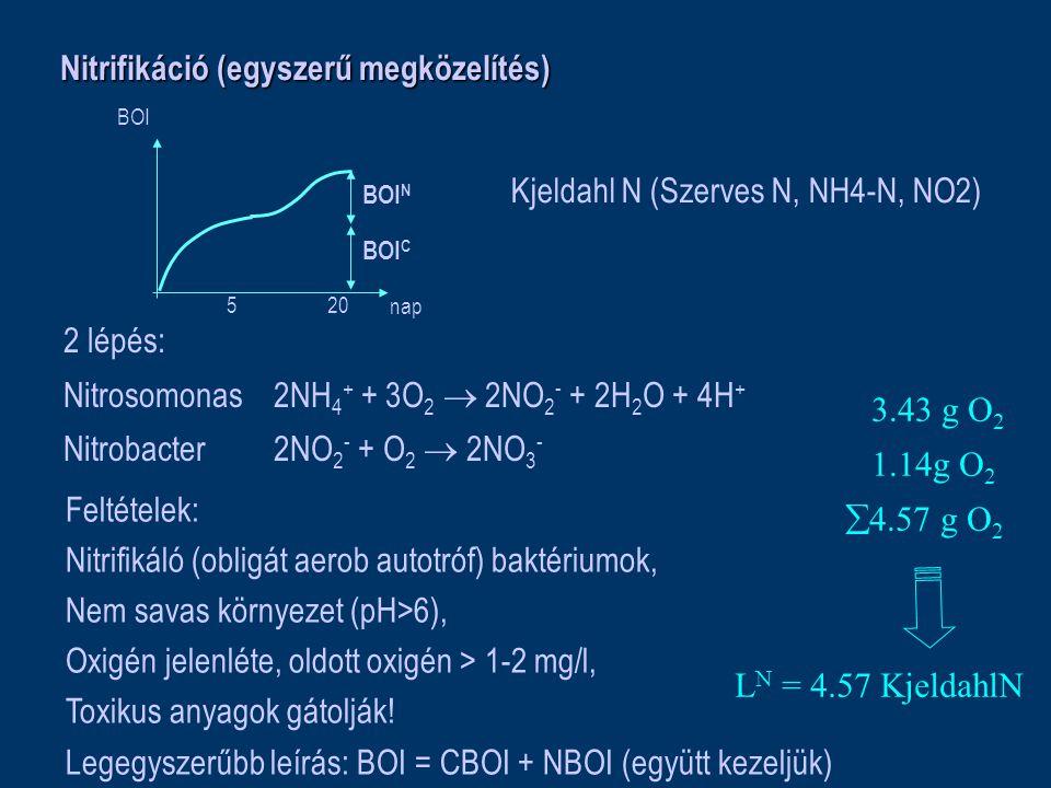 Nitrifikáció (egyszerű megközelítés) 5 20 nap BOI BOI C BOI N Kjeldahl N (Szerves N, NH4-N, NO2) 2 lépés: Nitrosomonas2NH 4 + + 3O 2  2NO 2 - + 2H 2