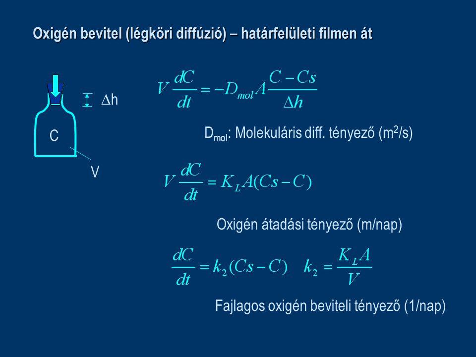 Oxigén bevitel (légköri diffúzió) – határfelületi filmen át C V hh D mol : Molekuláris diff. tényező (m 2 /s) Oxigén átadási tényező (m/nap) Fajlago