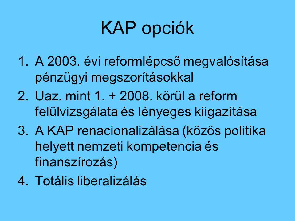 KAP opciók 1.A 2003. évi reformlépcső megvalósítása pénzügyi megszorításokkal 2.Uaz. mint 1. + 2008. körül a reform felülvizsgálata és lényeges kiigaz