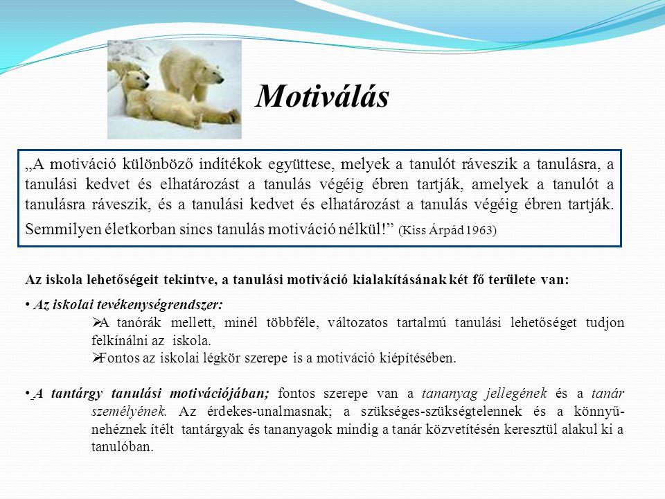 """Motiválás """"A motiváció különböző indítékok együttese, melyek a tanulót ráveszik a tanulásra, a tanulási kedvet és elhatározást a tanulás végéig ébren"""