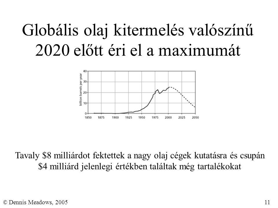 11© Dennis Meadows, 2005 Globális olaj kitermelés valószínű 2020 előtt éri el a maximumát Tavaly $8 milliárdot fektettek a nagy olaj cégek kutatásra é