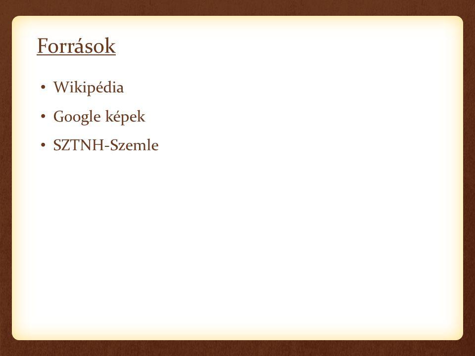 Források Wikipédia Google képek SZTNH-Szemle