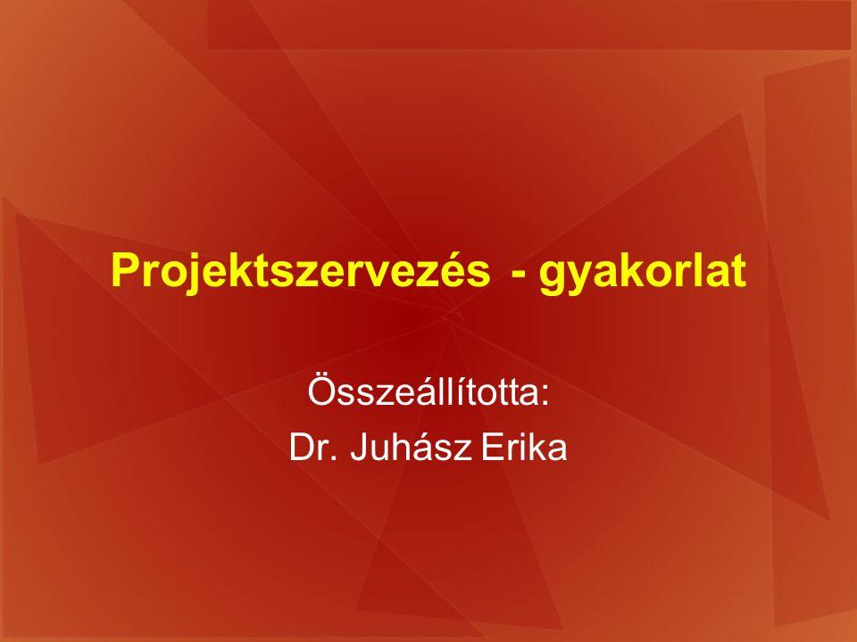 Projektszervezés - gyakorlat Összeállította: Dr. Juhász Erika