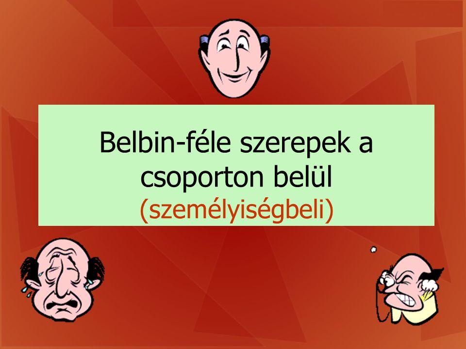 Belbin-féle szerepek a csoporton belül (személyiségbeli)