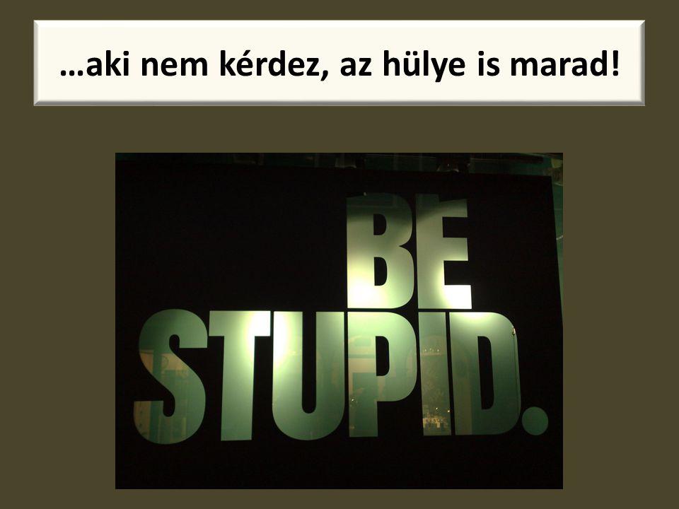 …aki nem kérdez, az hülye is marad!